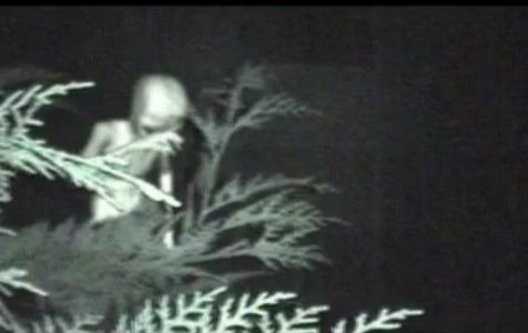 Veja as estranhas fotos de alienígenas encontradas na Deep Web - 3