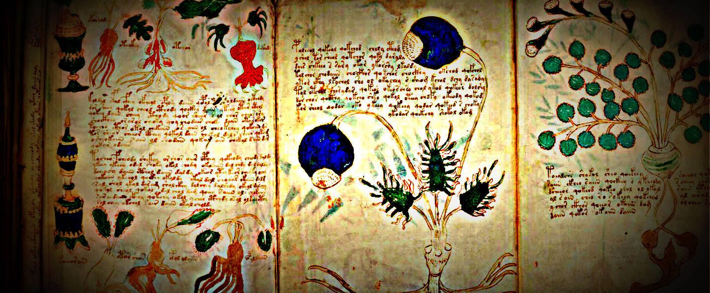Resultado de imagen de El manuscrito Voynich