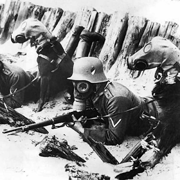 Curiosidades De La Primera Guerra Mundial History Channel