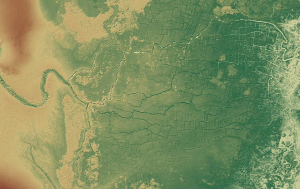 Una enorme red de canales y cultivos mayas oculta bajo la selva - 1