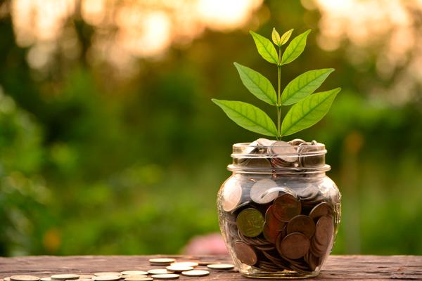 Naturaleza y economía