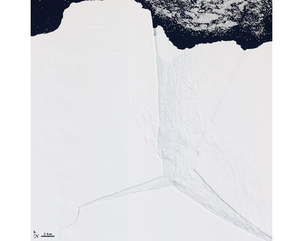 Varios glaciares en la Antártida oriental, incluido el glaciar Lambert, comparten la misma ruta hacia el océano a través de la plataforma de hielo Amery.
