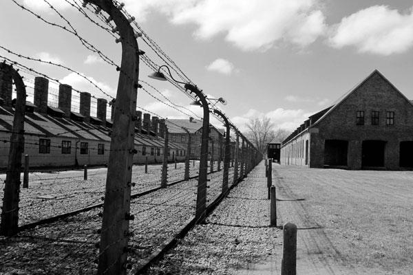 Zyklon-B: el gas ideado por los nazis para asesinar a millones - 1