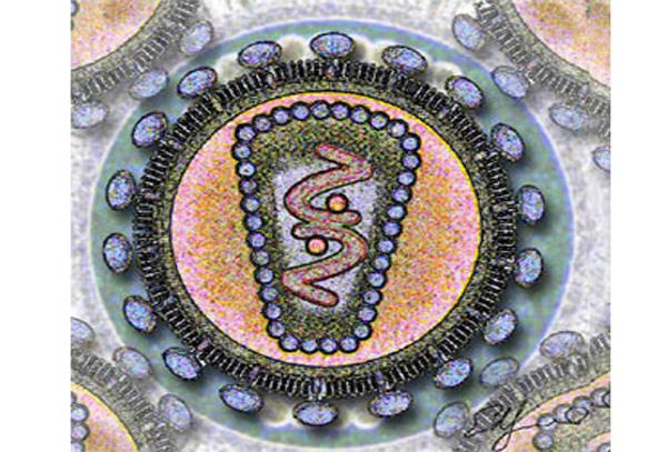 Representación del virus de la inmunodeficiencia humana.