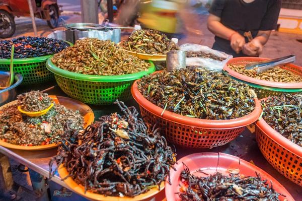 Insectos fritos para la venta.