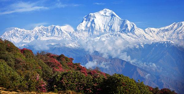 Vista a los Montes Himalayas