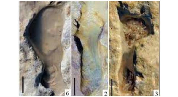 El hallazgo que revela los 'secretos' de los niños neandertales - 1