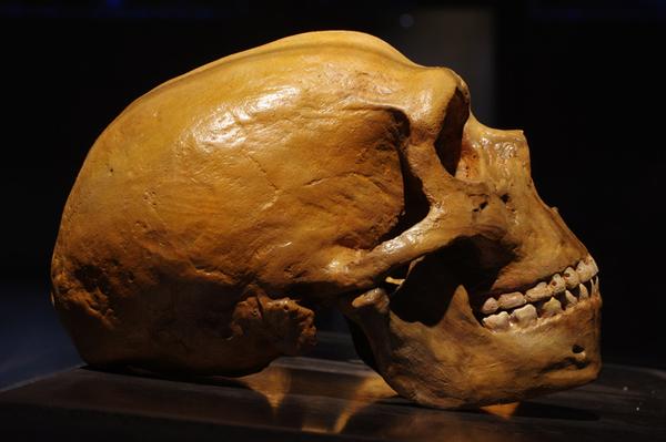 El hallazgo que revela los 'secretos' de los niños neandertales - 2